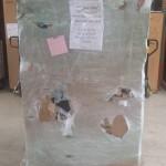 Freight Damaged Safe